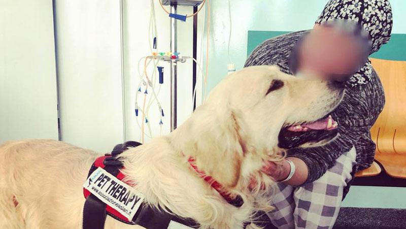La pet therapy all'interno delle camere di degenza della Oncologia Medica