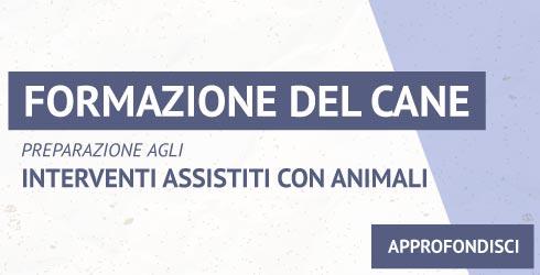 Formazione del cane - preparazione agli interventi assistiti con animali