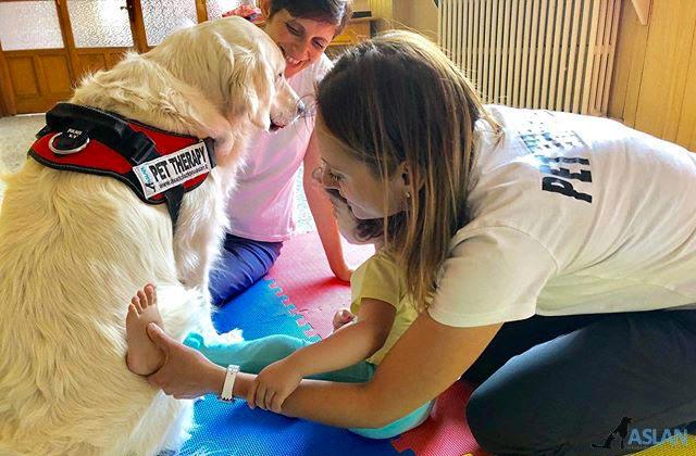 Corsi di formazione - Pet therapy Torino