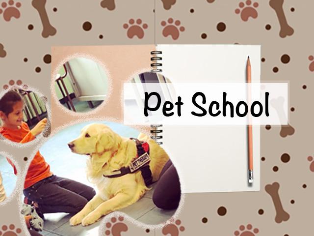 Pet School - Fondazione LA STAMPA Specchio dei tempi