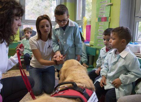 Progetto-Pet-School-daisy-1