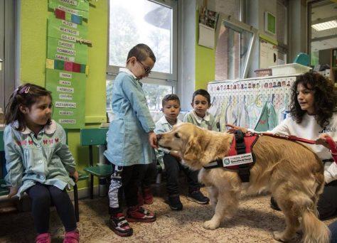 Progetto-Pet-School-daisy-3