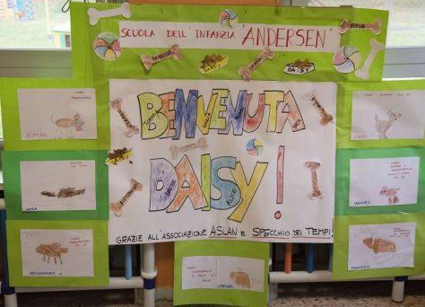 Progetto-Pet-School-daisy-4