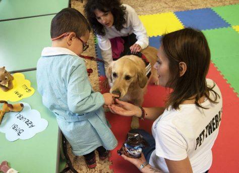 Progetto-Pet-School-daisy-6