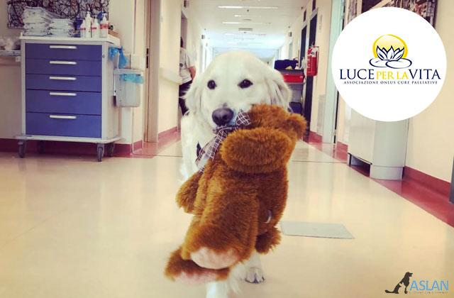 Progetto di Pet therapy Torino - Un Cane per la vita sostenuto dalla fondazione Luce della Vita