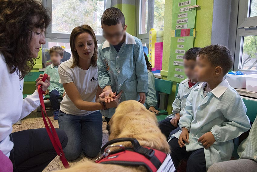 Progetto Pet therapy - Pet School