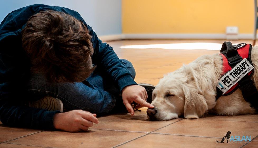 Insieme a te un cane per amico - Reale Foundation