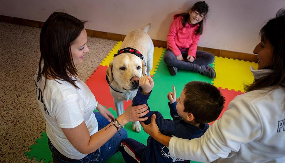 Corso propedeutico per la Pet Therapy Torino